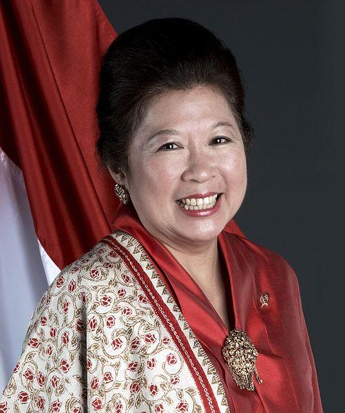 Profile Prof. Mari Elka Pangestu, M.Ec., Ph.D Direktur Pelaksana, Kebijakan Pembangunan dan Kemitraan untuk Bank Dunia