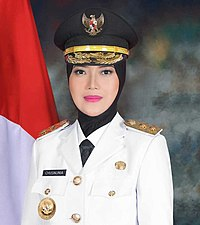 200px-Wakil_Gubernur_Lampung_Chusnia